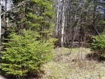 Lots and Land for Sale in Gasperaux, Prince Edward Island $16,900