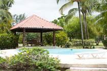 Condos for Sale in Cocotal, Bavaro - Punta Cana, La Altagracia $195,000