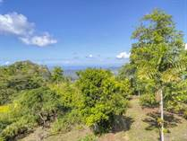 Lots and Land for Sale in Tinamastes, Puntarenas $480,000