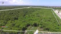 Lots and Land for Sale in Bavaro, La Altagracia $945,000