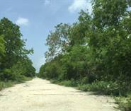Lots and Land for Sale in Playa del Carmen, Quintana Roo $8,140,000