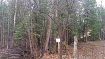 Lots and Land for Sale in Rural Kanata, Kanata, Ontario $125,000