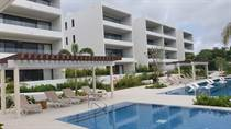 Homes for Rent/Lease in El Cielo, playa del carmen, Quintana Roo $1,400 one year