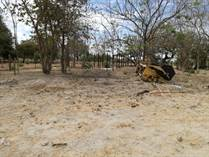Homes for Sale in Guanacaste, Belen, Guanacaste $31,000