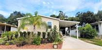 Homes for Sale in LakeShore Villa, Tampa, Florida $84,900