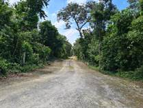 Homes for Sale in Puerto Morelos, Quintana Roo $21,593