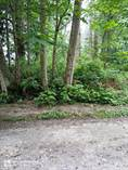 Lots and Land for Sale in Hat Island, Washington $70,000