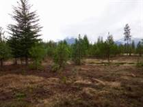 Lots and Land for Sale in Libby, Montana $68,500