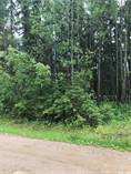 Lots and Land for Sale in Candle Lake, Saskatchewan $107,000