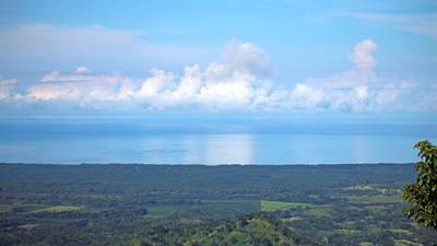 Subdivided Titled Building Sites on 185 Acres With Ocean Views