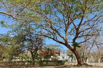 Homes for Sale in Playa Tamarindo, Tamarindo, Guanacaste $76,000