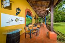 Commercial Real Estate for Sale in Brasilito, Guanacaste $99,000