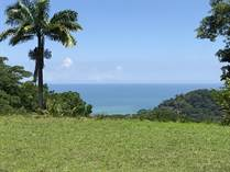 Lots and Land for Sale in Escaleras , Dominical, Puntarenas $179,000