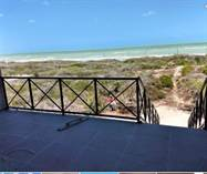 Homes for Sale in Sisal, Yucatan $5,900,000