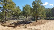 Lots and Land for Sale in Valdez, New Mexico $50,000