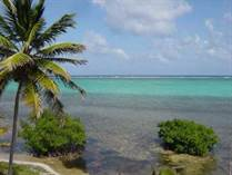 Homes for Sale in Quinta Laguna Puerto Aventuras, Xcalak, Quintana Roo $997,000