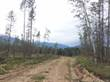 Lots and Land for Sale in Spillimacheen, British Columbia $389,000