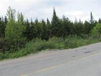 Lots and Land for Sale in Bonavista, Newfoundland and Labrador $42,500