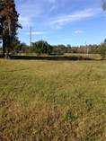 Lots and Land for Sale in Lutz, Florida $490,000