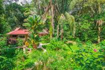 Commercial Real Estate for Sale in Ojochal, Puntarenas $599,000