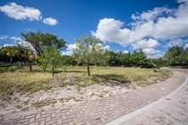 Homes for Sale in Los Labradores, San Miguel de Allende, Guanajuato $145,000