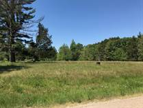 Lots and Land for Sale in Wisconsin Dells, Wisconsin $49,900