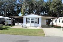 Homes Sold in Tropical Acres Estates, Zephyrhills, Florida $27,500