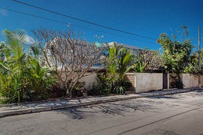 Fully Renovated Mid-Century in Aleman