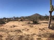 Lots and Land for Sale in El Pescadero, Baja California Sur $55,000