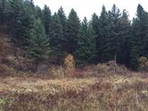 Lots and Land for Sale in Christian Valley, British Columbia $349,000