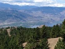 Lots and Land for Sale in Anarchist Mountain, Osoyoos, British Columbia $429,900
