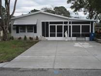 Homes for Sale in Brookridge, Brooksville, Florida $164,500