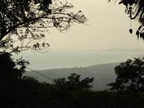 Lots and Land for Sale in Lagunas, Puntarenas $94,000
