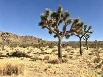 Lots and Land for Sale in Yucca Valley, California $199,800