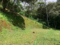 Lots and Land for Sale in Atenas, Alajuela $55,000