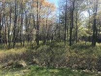 Lots and Land for Sale in Pocono Pines, Pennsylvania $39,000