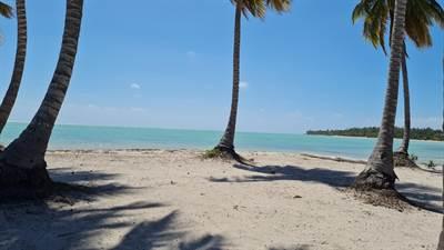 Beach Front Homesite Land  Juanillo Bay CG  Punta Cana, Cap Cana, Dominican Republic