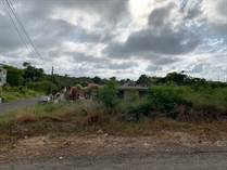 Homes for Sale in Bo. Puente, Camuy, Puerto Rico $29,900