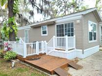 Homes for Sale in Riverview, Florida $55,900