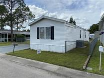 Homes for Sale in Three Lakes Mobile Home Park, Tampa, Florida $48,000
