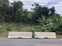 Lots and Land for Sale in Bo. Beatriz de Cidra, Cidra, Puerto Rico $35,000