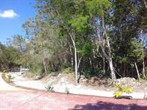 Lots and Land for Sale in Playa del Carmen, Quintana Roo $50,000