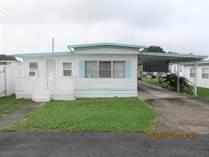 Homes Sold in Zephyrhills, Florida $9,999