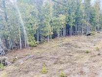 Lots and Land for Sale in Pike Bay, Ontario $259,000