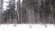 Lots and Land for Sale in Lessard Landing, Cherhill, Alberta $74,494