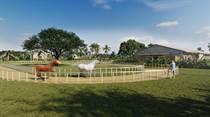 Homes for Sale in Bavaro, La Altagracia $511,000