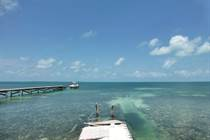 Homes for Sale in Caye Caulker South, Caye Caulker, Belize $149,000