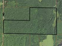 Lots and Land for Sale in Langlade County, Lily, Wisconsin $480,000
