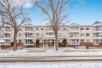 Homes for Sale in Nutana, Saskatoon, Saskatchewan $239,900