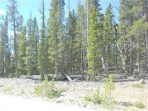 Lots and Land for Sale in Fairplay, Colorado $23,750